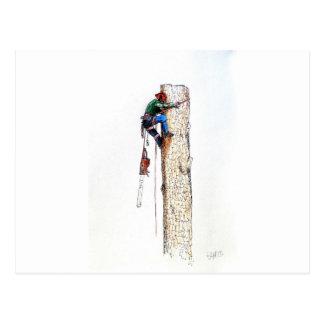 Tree Surgeon Arborist Stihl Postcard