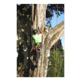 Tree surgeon lumberjack hanging from a big tree stationery