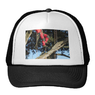 Tree surgeon lumberjack hanging from a big tree trucker hat