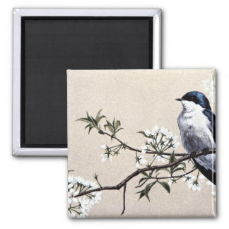 Tree swallow 2 inch square magnet
