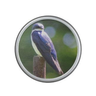 Tree Swallow Bluetooth Bumpster Speaker