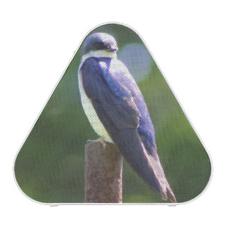 Tree Swallow Bluetooth Pieladium Speaker
