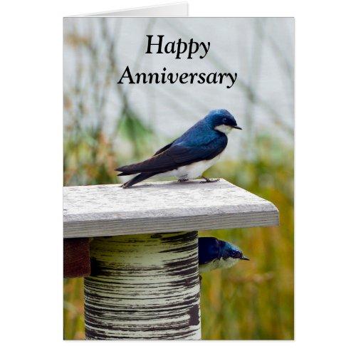 Tree Swallow Couple Happy Anniversary Card