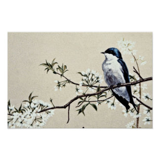 Tree swallow flowers poster