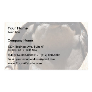 Tree Swallow in box Double-Sided Standard Business Cards (Pack Of 100)