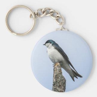 Tree Swallow Keychains