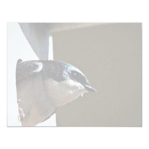 Tree Swallow Profile in Nest Box 4.25x5.5 Paper Invitation Card