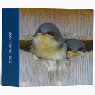 Tree Swallows Looking Out at the Big Wide World 3 Ring Binder
