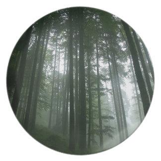 Tree Tall Pines Plates