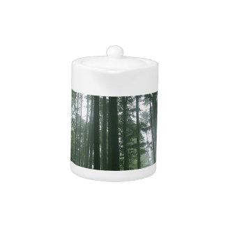 Tree Tall Pines