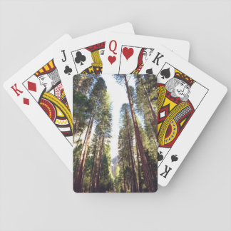 Tree Themed, Huge Trees Stretch Towards A Sunny Sk Poker Deck