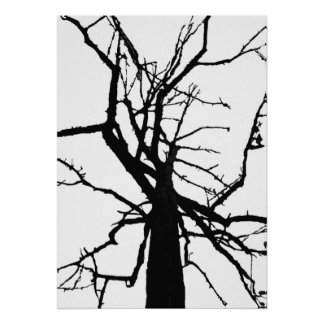 Tree Top Abstract Poster