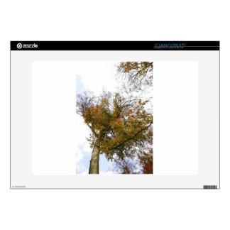 "TREE TOP IN AUTUMN 15"" LAPTOP SKIN"