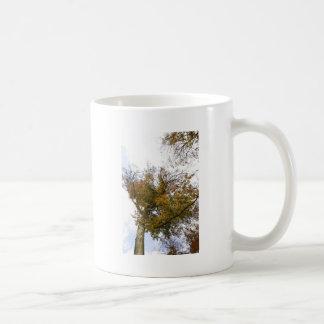 TREE TOP IN AUTUMN CLASSIC WHITE COFFEE MUG