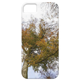 TREE TOP IN AUTUMN iPhone SE/5/5s CASE
