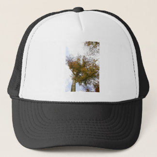 TREE TOP IN AUTUMN TRUCKER HAT