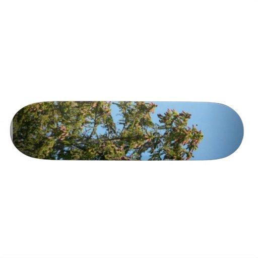 Tree Top Skateboard