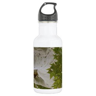 Tree top water bottle