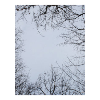 Tree Tops Branches in Snow in Winter Blue Grey Sky Letterhead