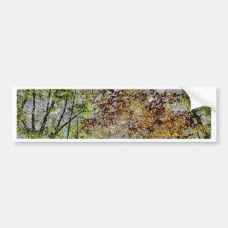 Tree Tops-HDR Bumper Sticker