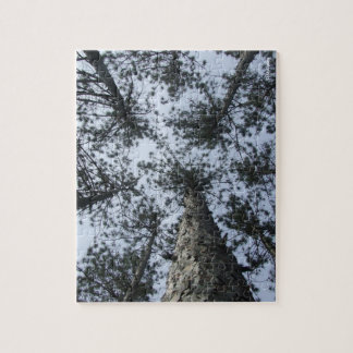 Tree Tops Puzzle