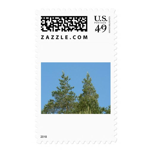 Tree Tops Stamp