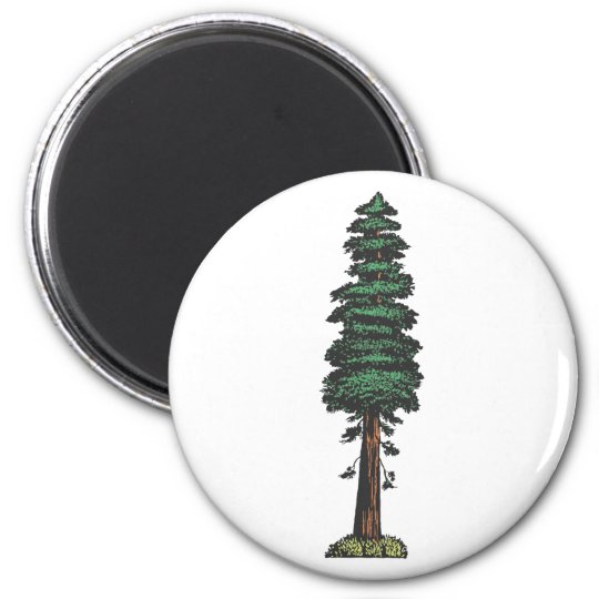 Tree tree sequoia magnet