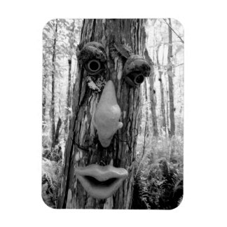 Tree troll on a Big Cypress tree. Magnet