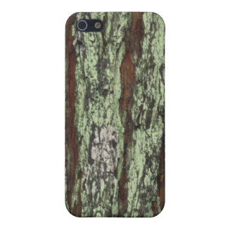"""""""Tree Trunk After Rain"""" iPhone Case"""