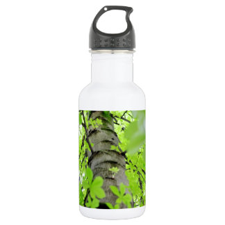 Tree Trunk Branches and Leaves Water Bottle