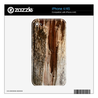 Tree Trunk Design Skin For The iPhone 4