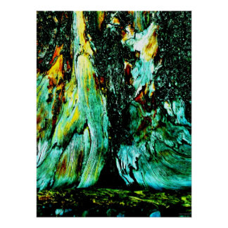 """Tree Trunk One"" JTG Art Poster"