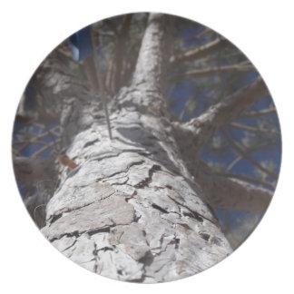 Tree trunk dinner plate