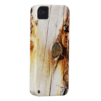 Tree Trunk with Knots iPhone 4 Case-Mate Case