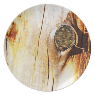 Tree Trunk with Knots Dinner Plate