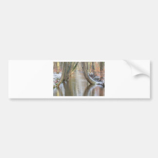 Tree trunks and forest stream  with snow in winter bumper sticker