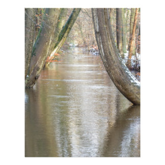 Tree trunks and forest stream  with snow in winter letterhead