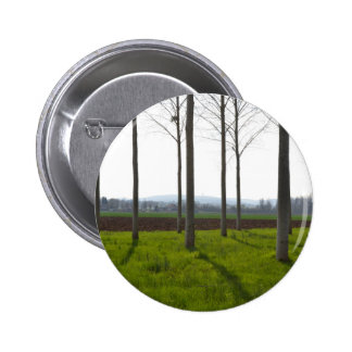 Tree trunks and the French countryside Pinback Button