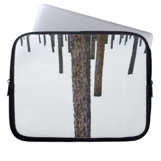 Tree Trunks in Snow Computer Sleeve