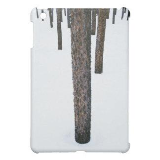 Tree Trunks in Snow iPad Mini Case