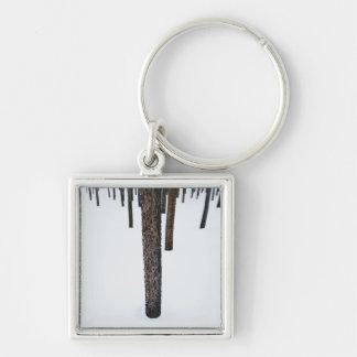 Tree Trunks in Snow Keychain
