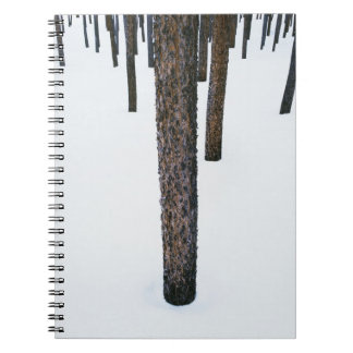 Tree Trunks in Snow Spiral Note Book