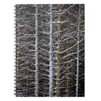 Tree trunks in winter spiral notebooks