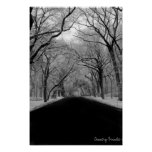 Tree Tunell Print