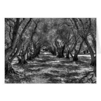Tree Tunnel Card