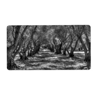 Tree Tunnel Personalized Shipping Label