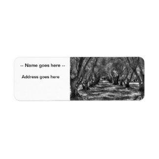 Tree Tunnel Label