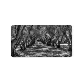 Tree Tunnel Custom Address Label