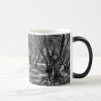 Tree Tunnel Magic Mug
