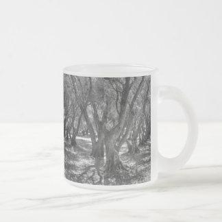 Tree Tunnel 10 Oz Frosted Glass Coffee Mug